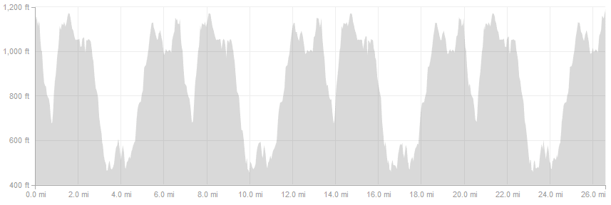 bf-sf_elevation-profile