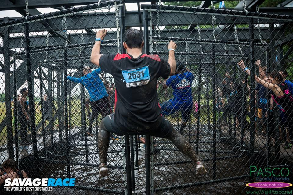 Savage-Dallas-On-The-Fence