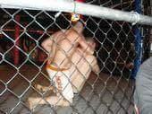 Clydesdale-Runner-Wrestling
