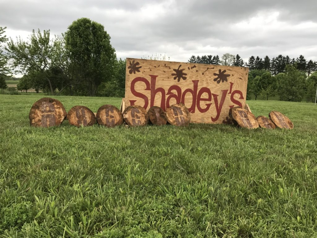 Shadey's-Rugged-Run-2017