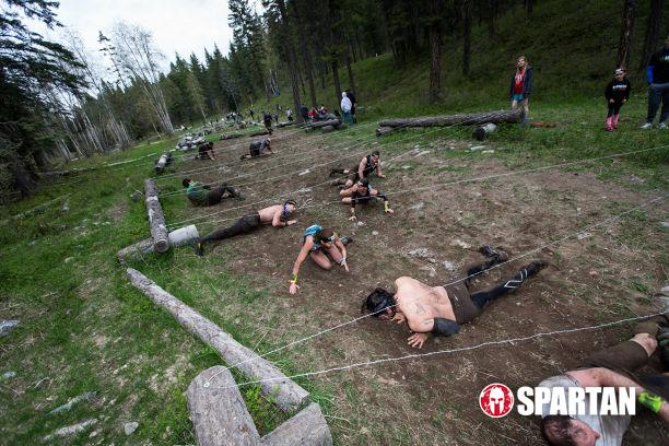 Long Barbed Wire Crawl