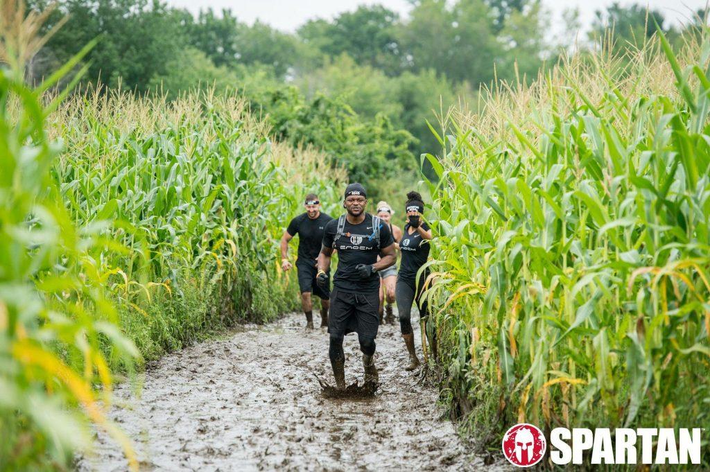 Barre-Sprint-Corn-Field